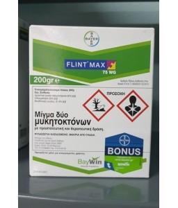 Flint Max 75WG 60gr/200gr