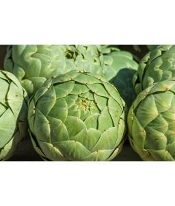 Αγκινάρα πράσινη