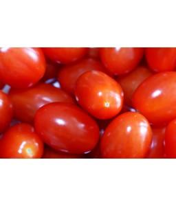 Τομάτα Ornela F1 τύπου cherry 500sd Hazera