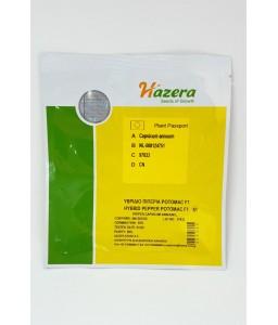 Πιπεριά φλωρίνης Potomac F1 500sd Hazera