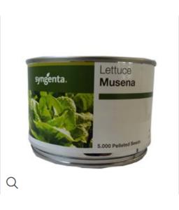 Μαρούλι Musena 5000pills (Syngenta)