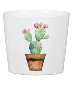 Γλάστρα κεραμική Cactus garden mini
